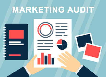 Marketing Audit